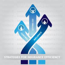 strategies for insurance efficiency