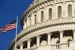 Politics_11_new.jpg